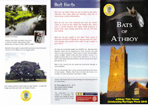 Bat leaflet side 1jpeg